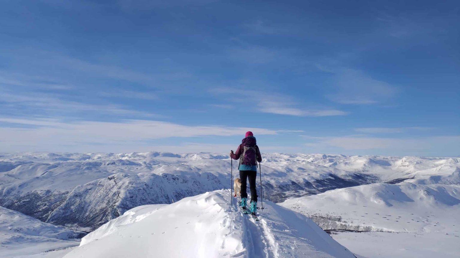 På toppen av Harahorn
